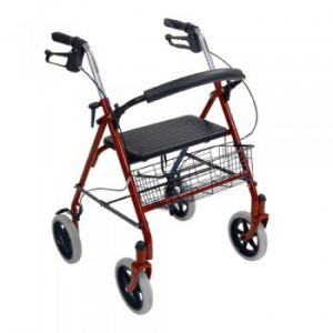Rollator With Seat and Wire Basket