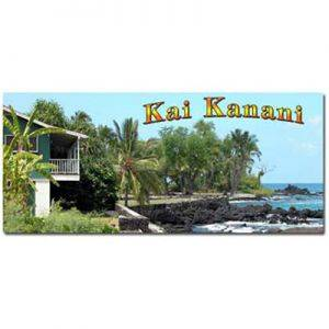 Hawaii Home Rentals