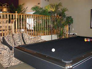 Image of the Pool Table