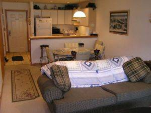 CRB203 Cinnamon Ridge Vacation Condo Rental
