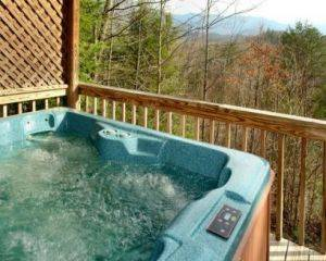 View of Hot Tub and Wooded Area