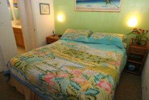 Hawaii Island Vacation Condo For Rent