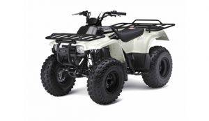 2x4 ATV For Rent