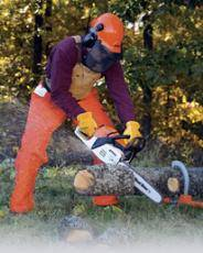 Gas Powered Chain Saw Rentals