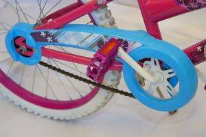 Virginia Beach Wheel of a Child Female Bike for Rent in v