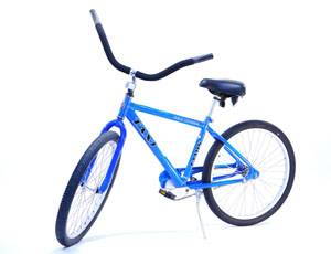 Jamis Male Road Cruiser Bike for Rent
