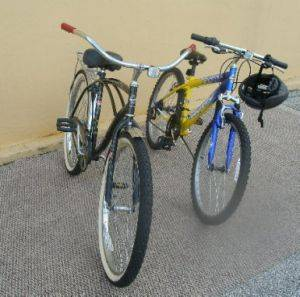 More Bicycle Rentals from