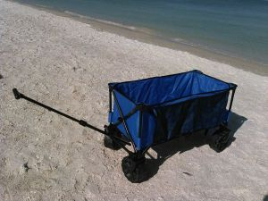 Rental Rate Available For A Beach Wagons Marco Island