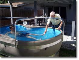 Miami Hydrotherapy Pool Rentals - Aquatic Physical Theraphy Pool For Rent - Florida Rehabilitation Pool Rental