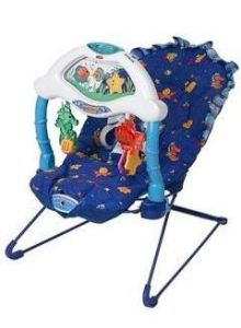 Image of the Bouncy Seat