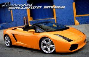 Exotic Car Rental Washington DC - Lamborghini Gallardo Spyder - Luxury Automobile Rentals