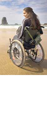 Heavy Duty Wheelchair