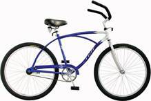 More Bicycle Rentals from Blue Sky Rentals - Florida