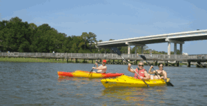 Kayak Tour Rentals in Hilton Head Island, SC