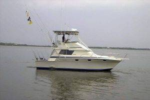 34ft Luhrs Boat Rentals in Florida Keys, FL