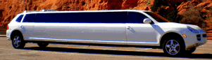 More Limo Rentals from Denver Limo