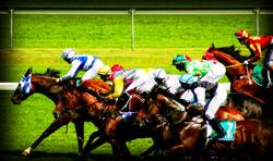 Race Night Derby Party Game Rentals in New Orleans, Louisiana