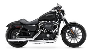 We Rent Harley Davidson Sportster 883 Motorcycles