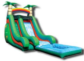 Image of Tropical Slide Inflatable