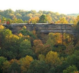 The Natural Land Bridge in Kentucky