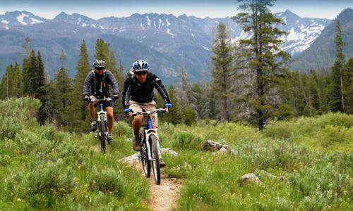 Bicycle Riders on Trail