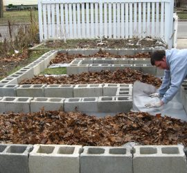 Build a raised bed at your home.