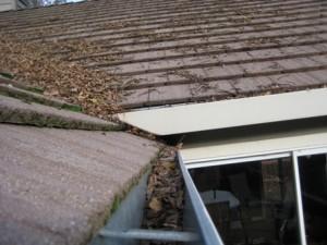 Roof Repair in Fall