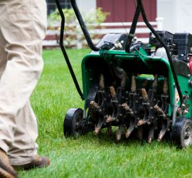 Tips for getting your lawn ready for spring.